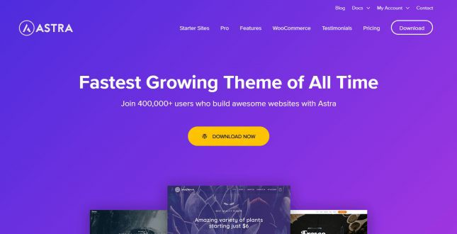 Astra WordPress Theme Review | Best Elementor Themes (By Webnus)