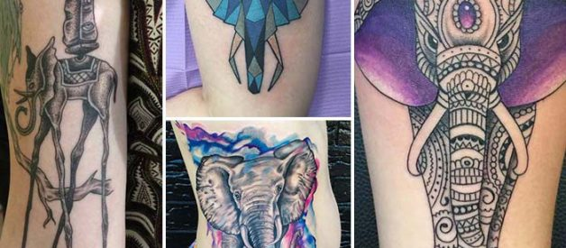 100+ Elephant Tattoo Model and Meanings of Elephant in Society