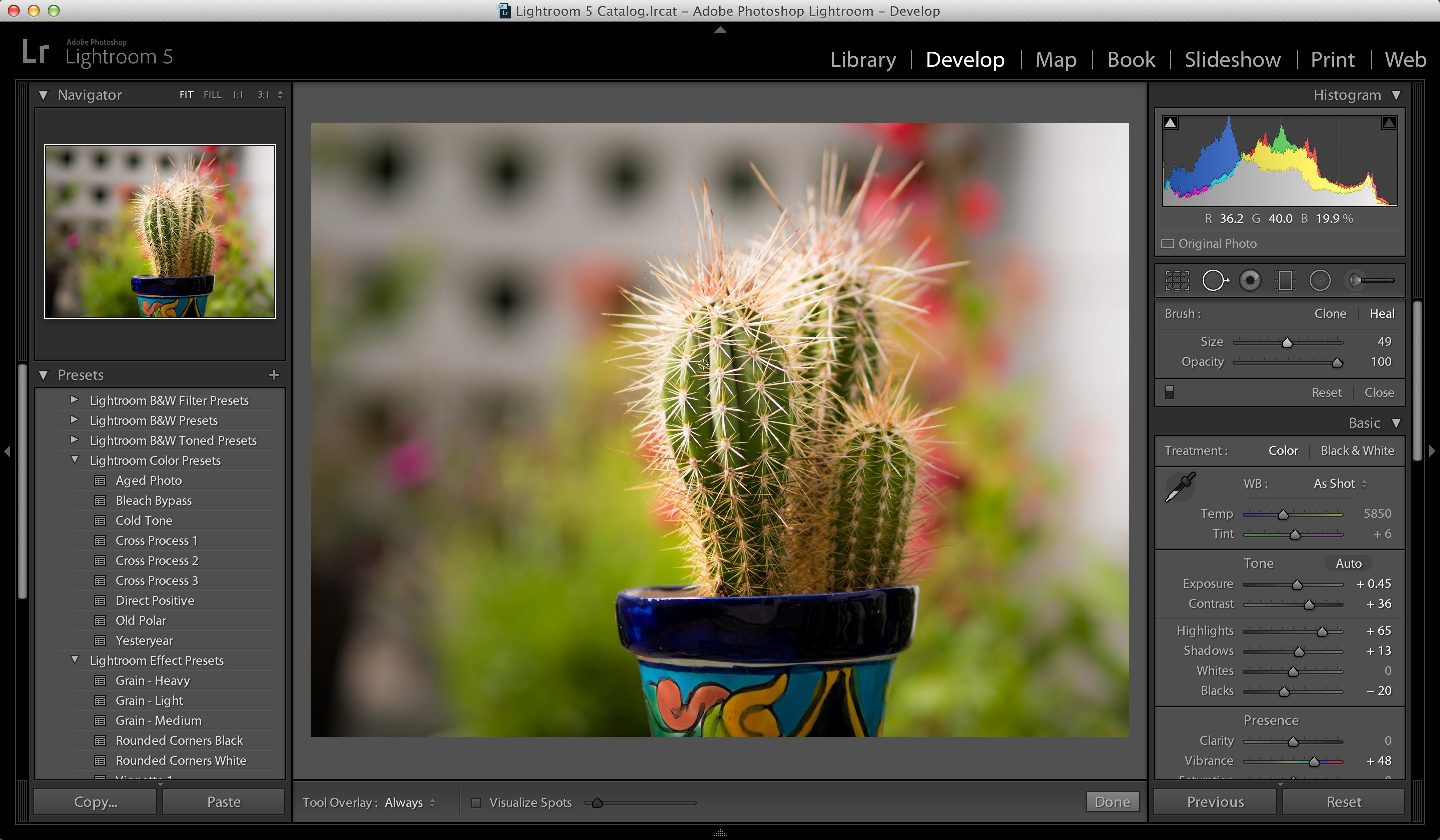 Best Photo Editing Apps for Mac 2020. Adobe Photoshop Lightroom.