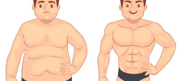ALCAR: the #1 Fat Loss Supplement You Should Be Using!