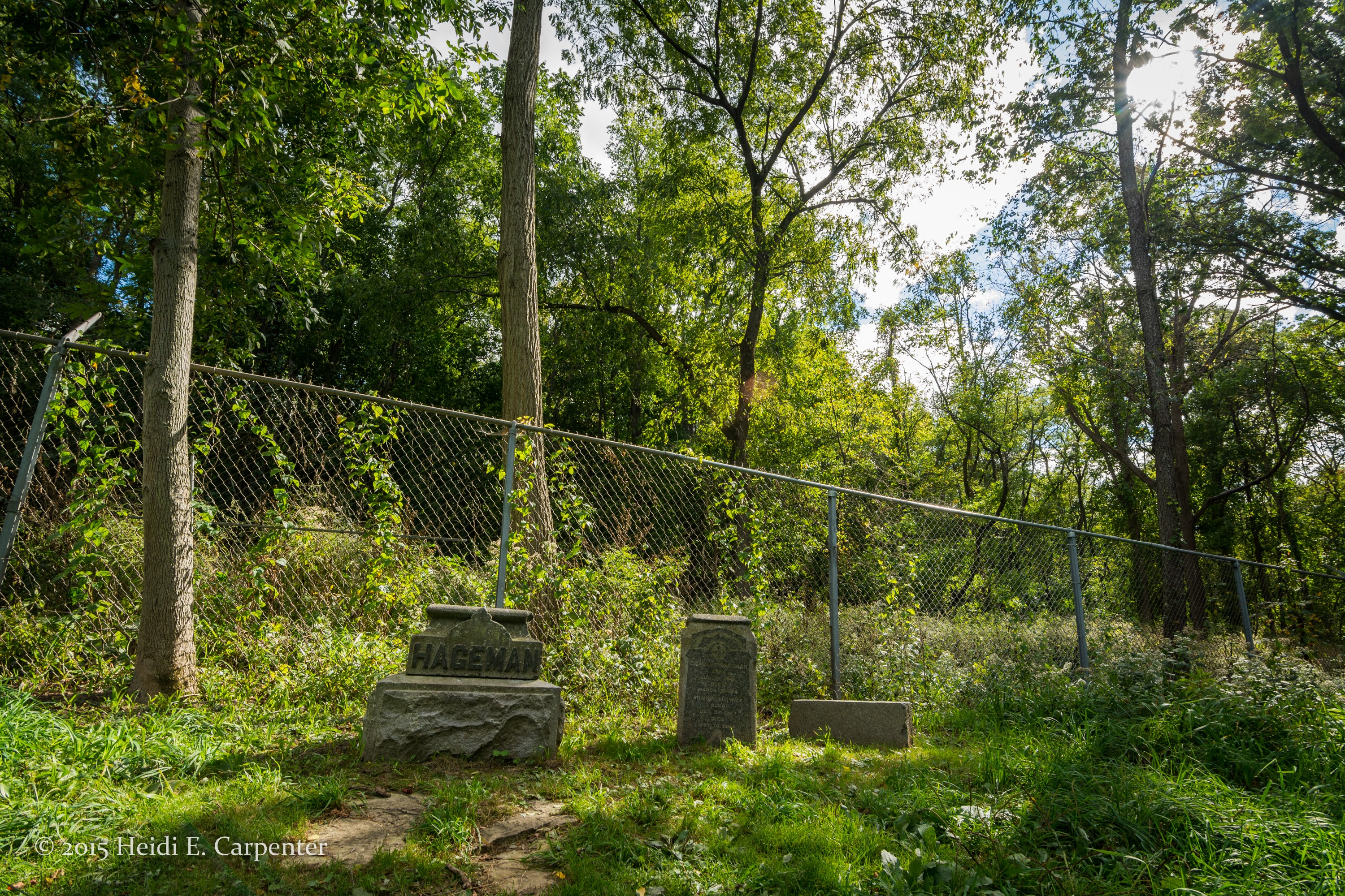 These Bachelor?s Grove Cemetery family monuments were vandalized and are missing their obelisks.