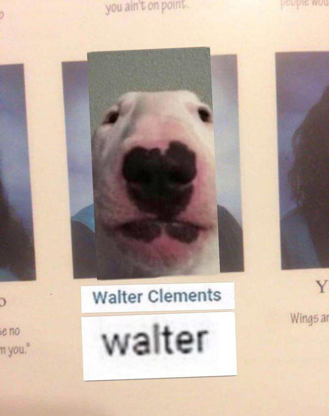 A ?Walter Clements? and ?Dog Face? meme mashup posted on r/OkBuddyRetard