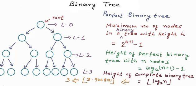 Binary Tree – Interview Questions and Practice Problems