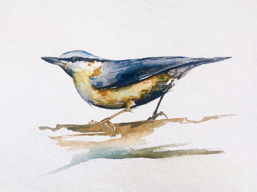 Bird watercolour painting tutorial