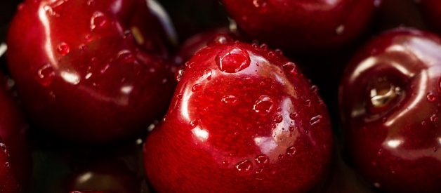 Can Dogs Eat Cherries? Is It Safe For Dogs To Eat Cherries?