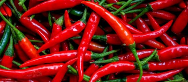 Chillies deliver spicy kick against lung cancer