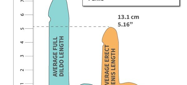 Dildo-Envy? The Average Dildo Size Compared To The Average Penis