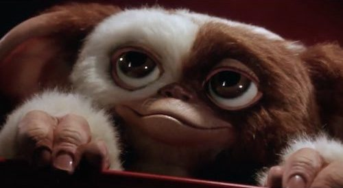 Gremlins' Three Rules: An Evolutionary Analysis