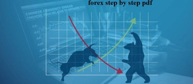 HOW TO TRADE FOREX STEP BY STEP PDF FOR BEGINNERS