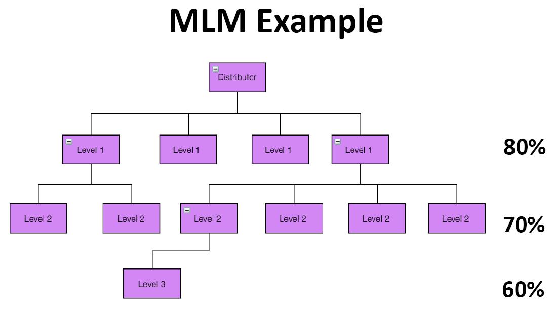 MLM Example