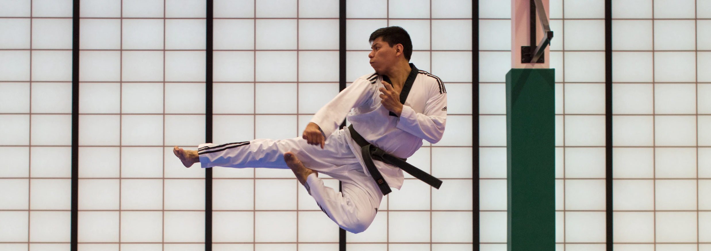 Taekwondo specialist throwing the side kick