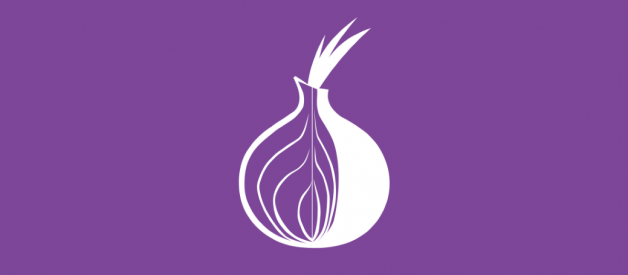 Running the Tor Browser on Kali Linux the proper way