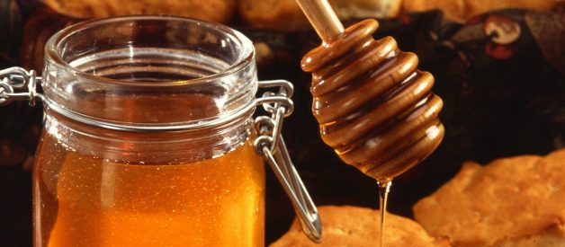 Should Vegans Eat Honey?