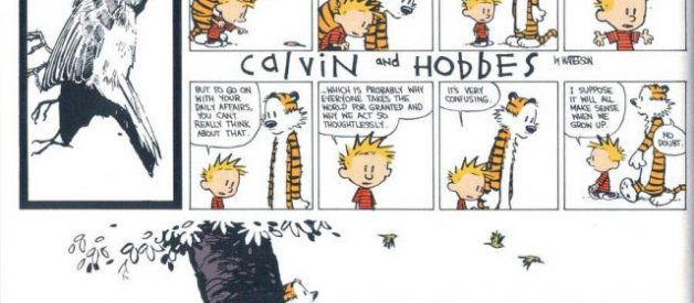 The absolutely best Calvin and Hobbes comics ever!