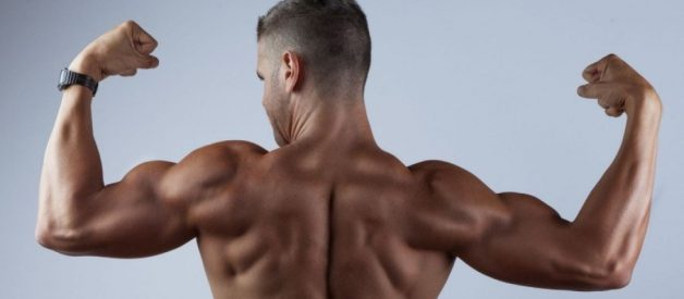 The Best Back Workout Routine (for Natural Weightlifters)