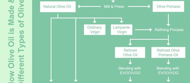 The Complete Guide to Understanding All Different Types of Olive Oil