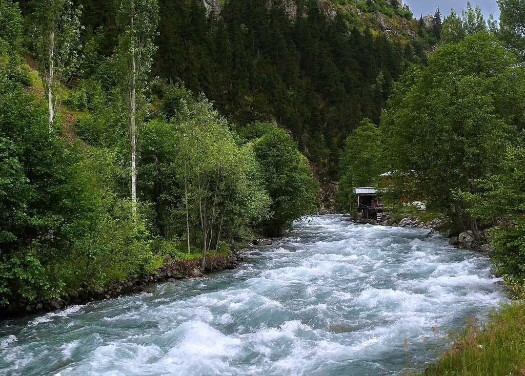 The fastest flowing river on the world: Artvin
