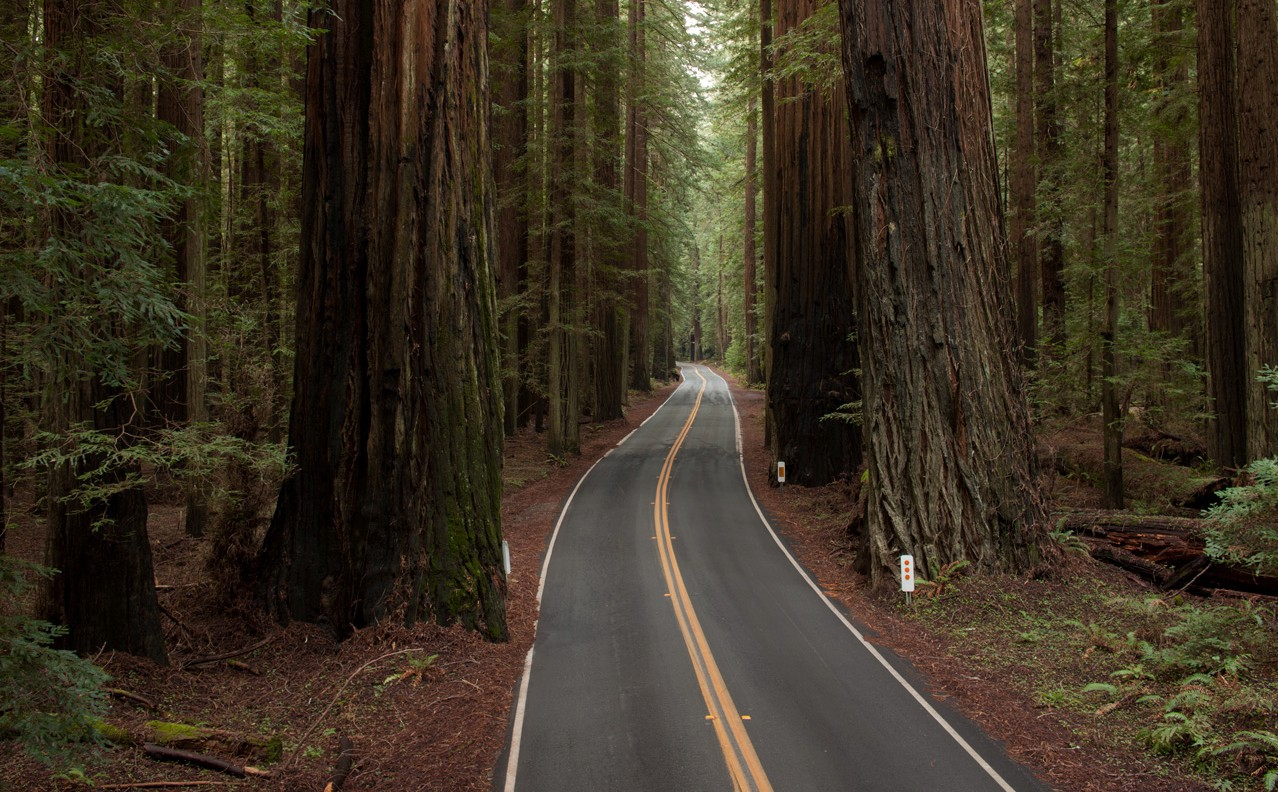 Humboldt County in northern California has a population of nearly 135,000 people.