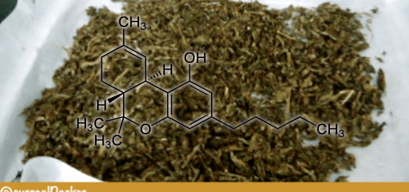 The Science of Decarboxylation