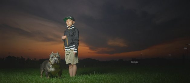 THE TOP AMERICAN BULLY KENNELS