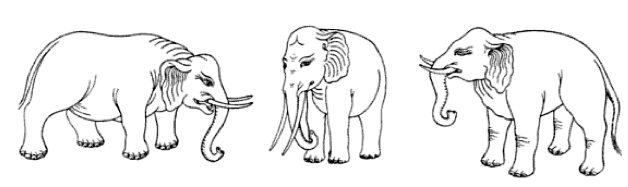 The True Meaning Behind Elephant Decorations