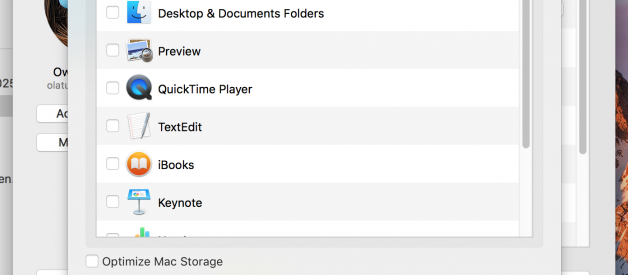 Tips to Free Up Purgeable Space on MacOS