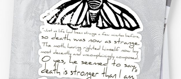 Virginia Woolf's The Death of the Moth : A Short Analysis