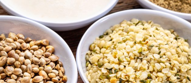 What are the benefits of hemp seeds?