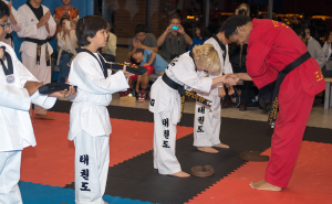 What Does a Black Belt in Tae Kwon Do Signify?