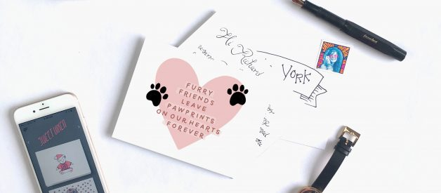 What to Write in a Pet Sympathy Card