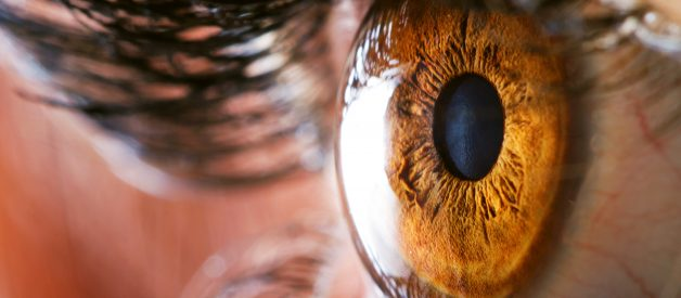 What's the difference between a camera and a human eye?