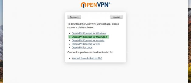 Which Mac VPN Client is the Best?