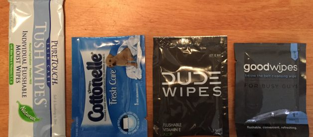 Which Single-Use Butt Wipe Brand is the Best?