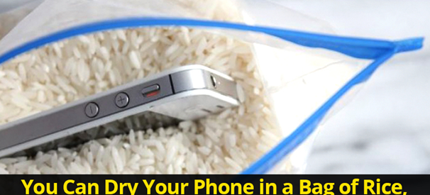 You Can Dry Your Phone in a Bag of Rice, Myth or Truth?